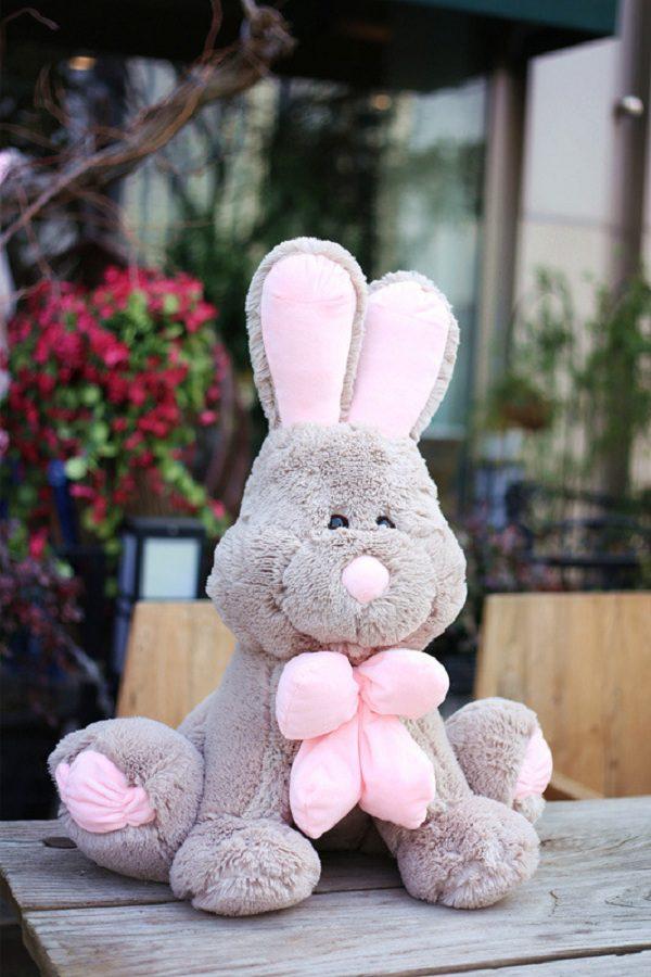 thỏ bông màu xám